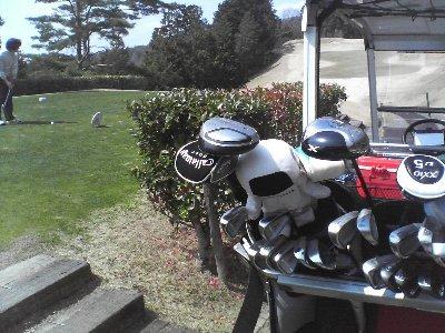 Golf08326