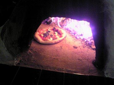 Pizza113