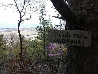 Yama42202
